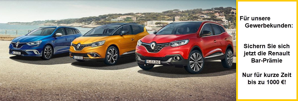 Renault Business Barpreis bis 07.2018